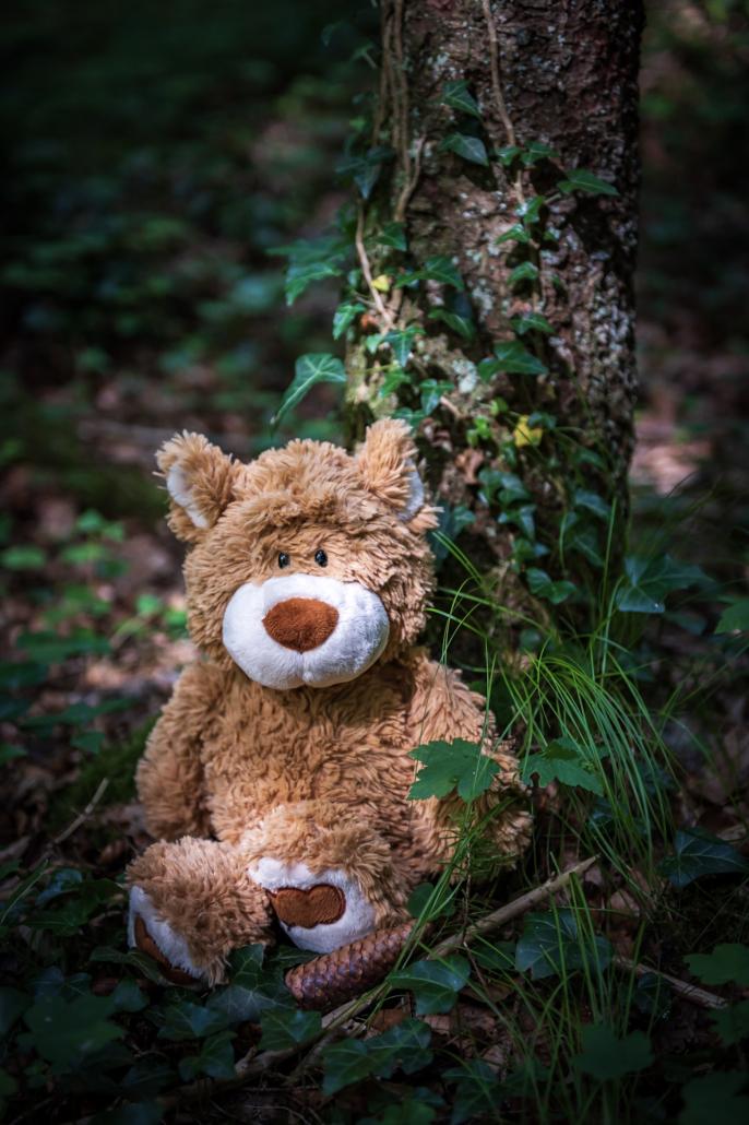 Teddybär im Wald